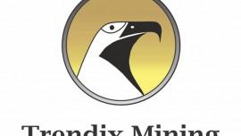 Trendix Mining