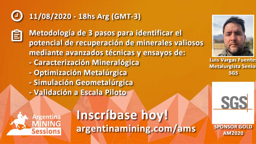 Próximo Webinar 11/08/20 - Luis Vargas - SGS