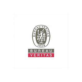 Webinar - 05/11/20 - 18hs  Argentina (GMT-3)- Bureau Veritas - Outsourcing: Casos de éxito en la industria minera